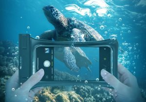 4 underwater Mobile photography