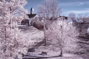 Infrared photography 7